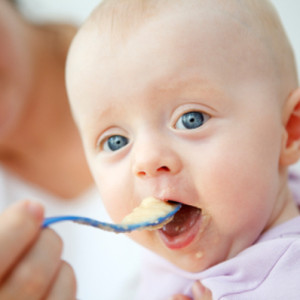 alimentation bebe