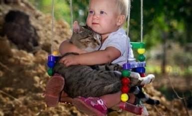 un bebe avec un chat 2